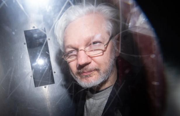 Assange bmsh